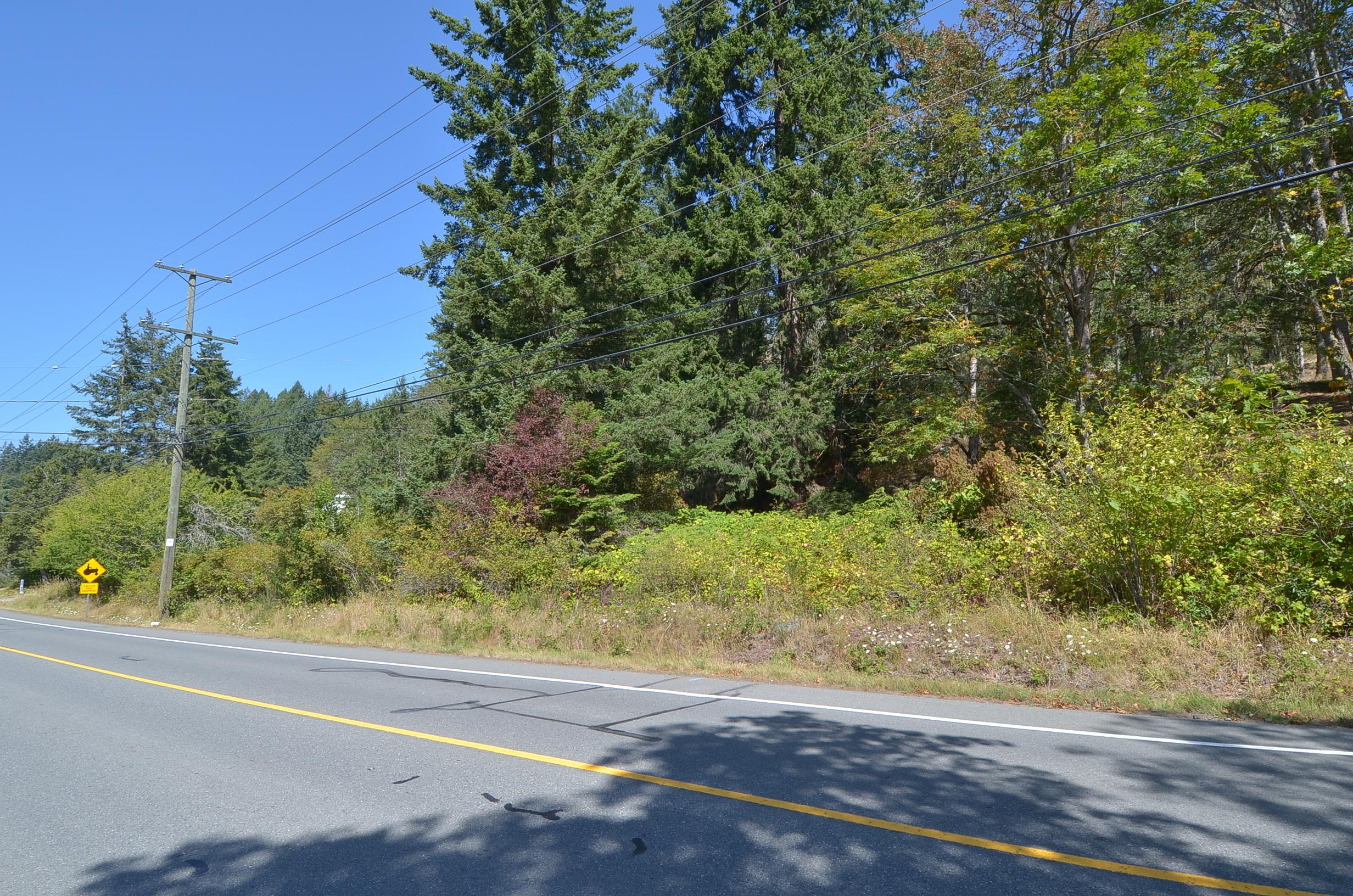 Lt 1 Herd Rd, Duncan, British Columbia  V9L 5W9 - Photo 10 - 845514